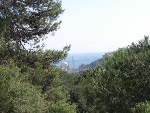 Fitness unterwegs - Aussicht auf den Bosporus